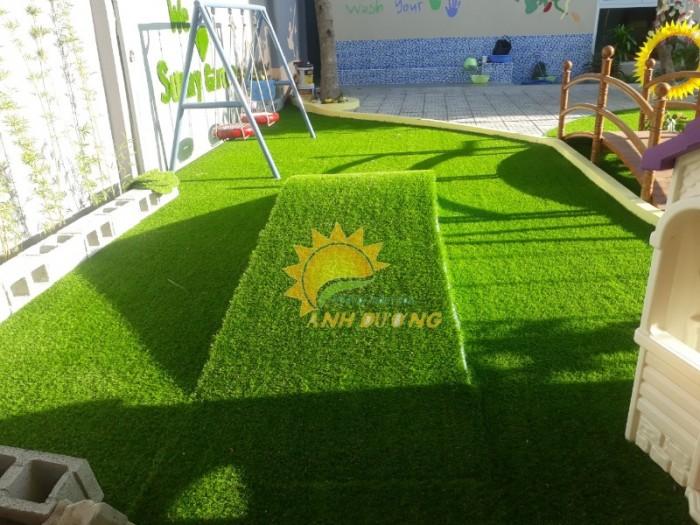 Thảm cỏ nhân tạo cao cấp cho trường mầm non, sân chơi trẻ em, sân bóng đá4