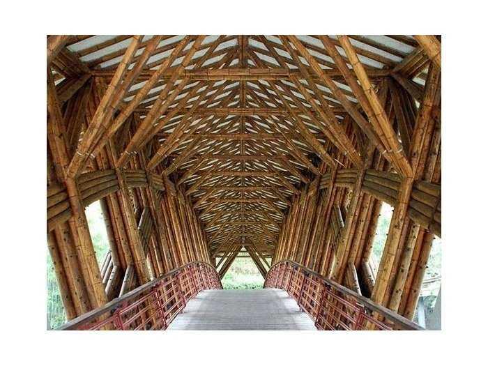 Cấp cây tre công trình xây dựng nội thất