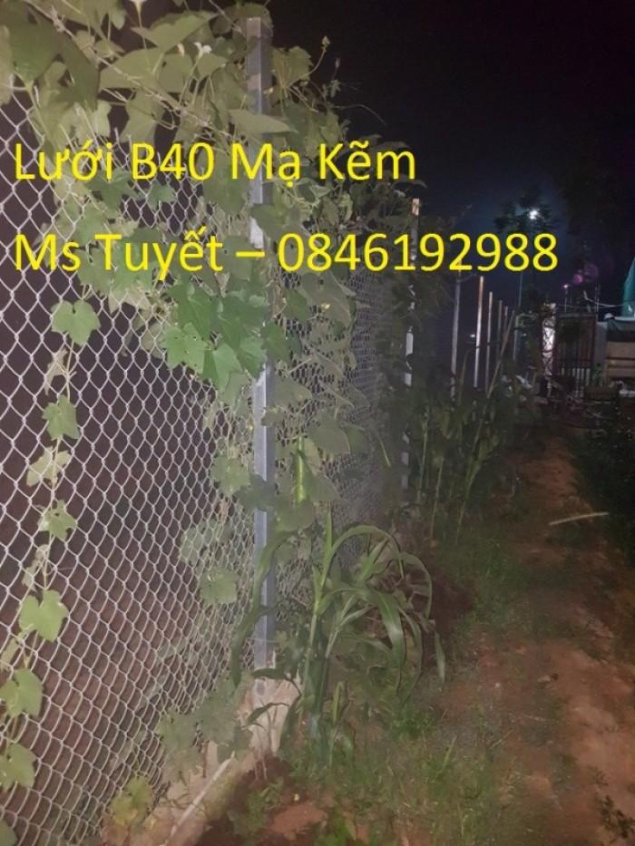 Giá lưới B40 Mạ Kẽm giá rẻ làm hàng rào4