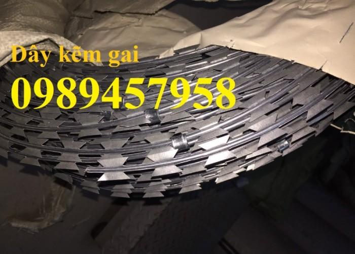 Dây thép gai inox304, dây kẽm lam hàng rào tại Sài Gòn0
