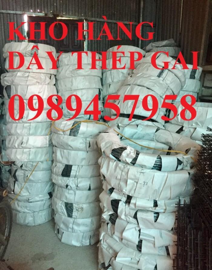 Dây thép gai inox304, dây kẽm lam hàng rào tại Sài Gòn1