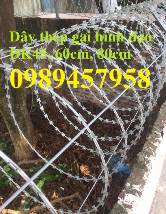 Dây thép gai inox304, dây kẽm lam hàng rào tại Sài Gòn2