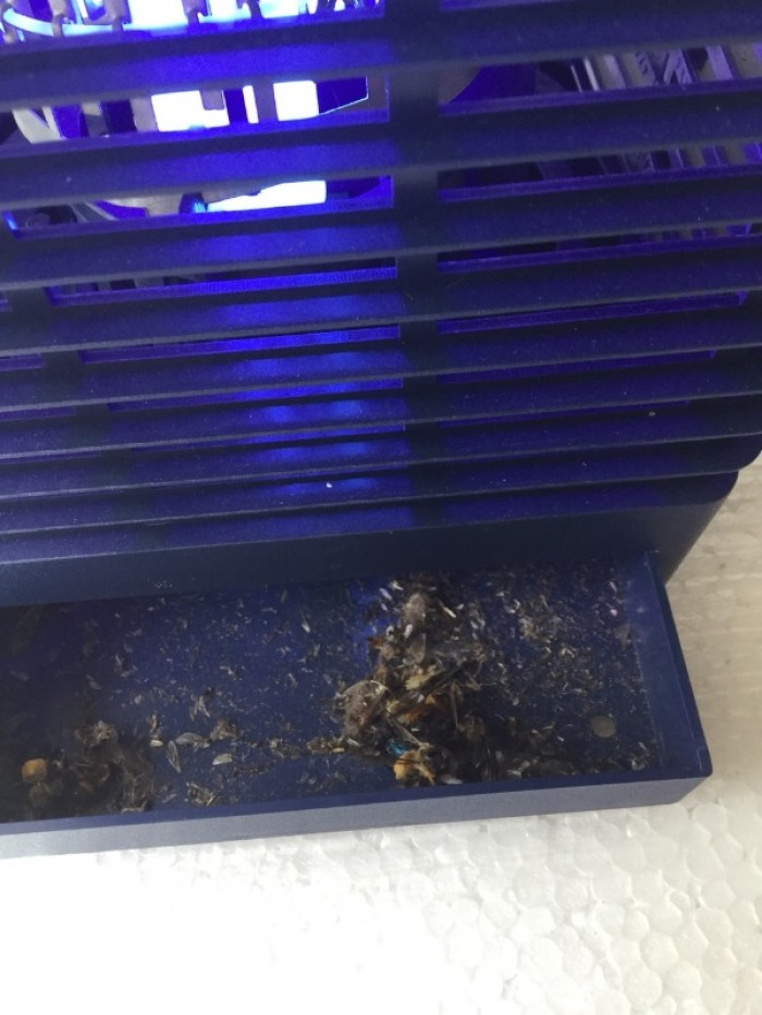 Thiết bị bắt côn trùng, diệt côn trùng gia đình, KTP-22W2