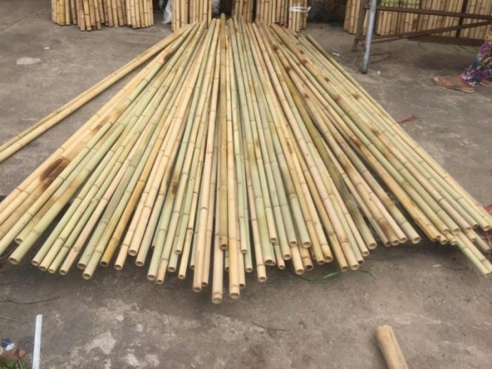 Bán sỉ bán lẻ cây tre tại TP Hồ Chí Minh. Bán cây tre tại Sài Gòn, bán cây nứa, bán cây trúc, bán tre tại HCM