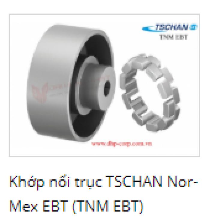 KHỚP NỐI TRỤC TSCHAN NOR-MEX  EBT(TNM EBT) Khớp nối trục TSCHAN Nor-Mex : là khớp nối có một miếng trung tâm có thể tháo rời, chủ yếu cho máy bơm. Nó chỉ ra các sai lệch trục góc, hướng tâm và trục trong phạm vi xác định. Khớp nối chuyển mô-men xoắn thông qua các bộ đệm đàn hồi có thể chịu áp lực của Pb được nối với nhau như một vòng trung gian,....0