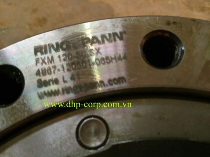 Bộ chống quay ngược Ringspann backstop Freewheels FXM, Stieber0