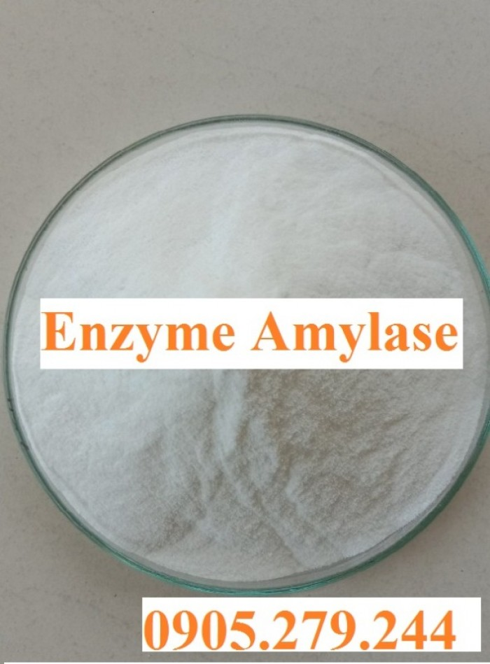 BioK chuyên cung cấp enzyme nguyên liệu giá nhà máy3