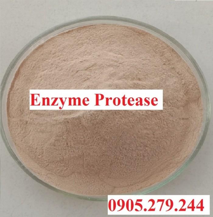 BioK chuyên cung cấp enzyme nguyên liệu giá nhà máy2