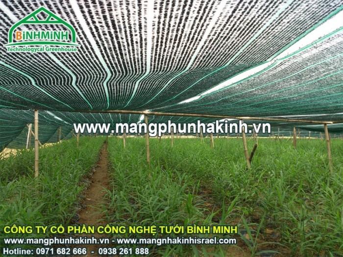 Lưới che lan, lưới che nắng vườn lan hà nội, lưới che giảm nắng, lưới cắt nắn
