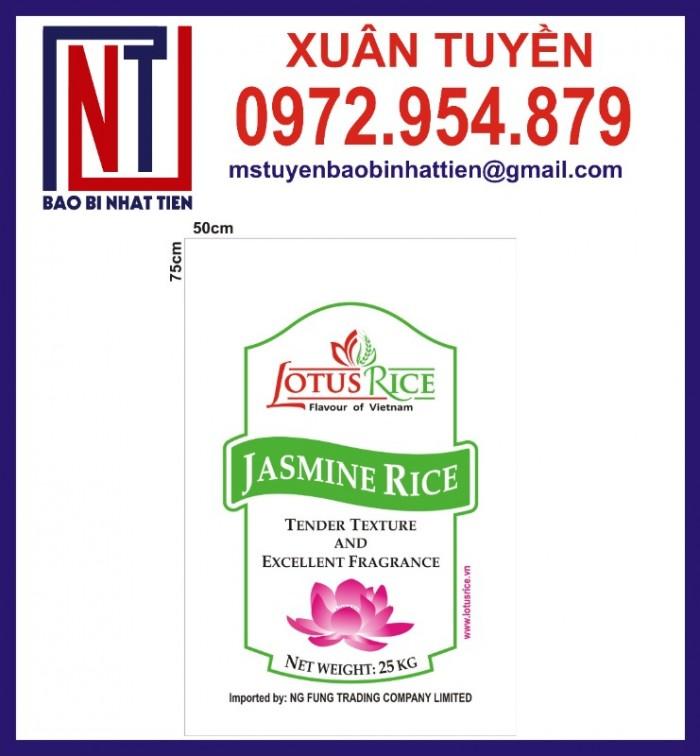 Bao bì đựng gạo in flexo, cung cấp bao PP dệt đựng gạo1