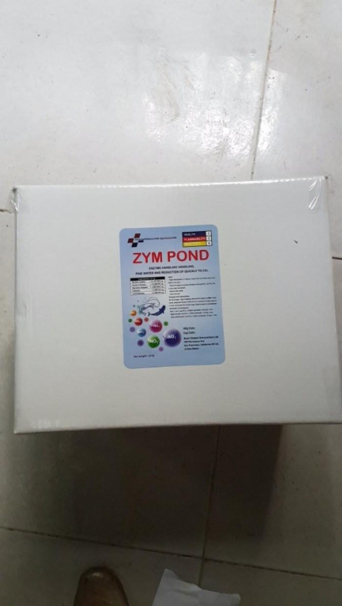 Phân phối men vi sinh zym pond nguyên liệu0
