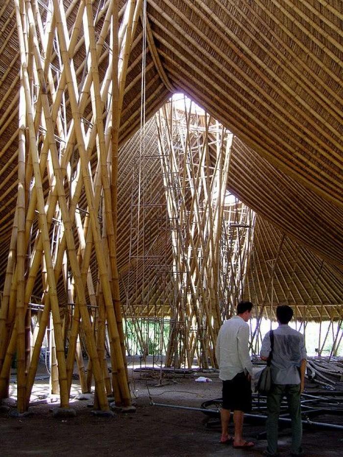 Bán cây tre đã qua sử lý mối mọt, cây tre khô, cây tre tươi, giá thành hợp lý với từng nhu cầu. Bán sỉ bán lẻ cây tre tại TP Hồ Chí Minh, bán cây nứa tại Sài Gòn, Bán cây trúc tại HCM.