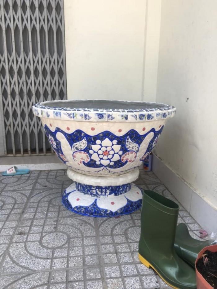 chậu hoa dán sành sứ Thế Sơn6