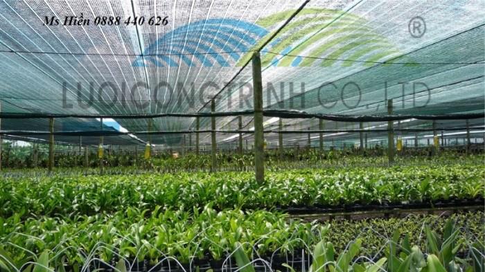 Lưới che nắng vườn lan màu đen2