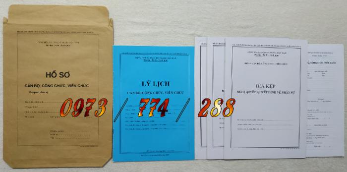 Hồ sơ cán bộ, công chức, mẫu B01-B02-B03-B04-B05-B06 - BNV10