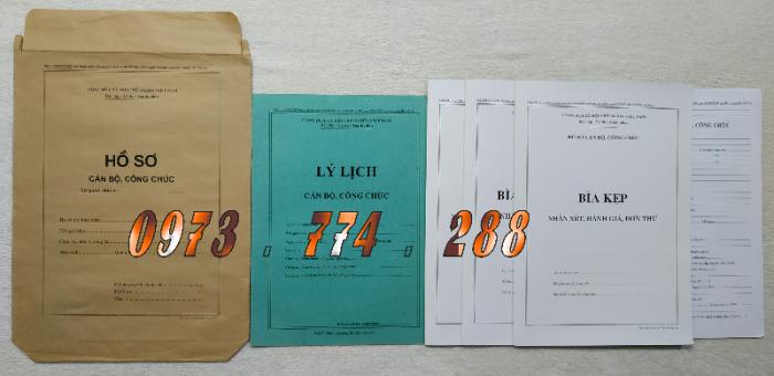 Bộ hồ sơ viên chức - Hồ sơ cán bộ, viên chức8