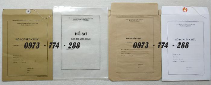Bì hồ sơ viên chức theo Thông tư 07/2019/TT-BNV ngày 01/06/2019 của Bộ Nội vụ.12