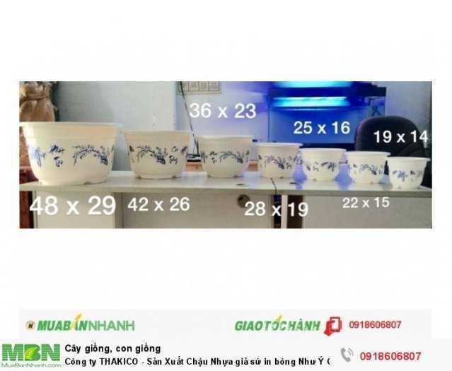 Công ty THAKICO - Sản Xuất Chậu Nhựa giả sứ in bông Như Ý Cát Tường0