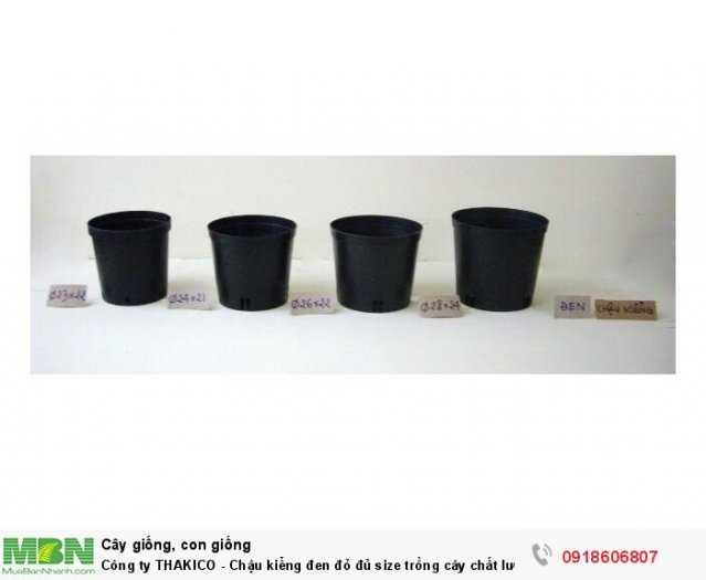 Công ty THAKICO - Chậu kiểng đen đỏ đủ size trồng cây chất lượng, giá rẻ0
