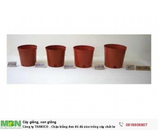 Công ty THAKICO - Chậu kiểng đen đỏ đủ size trồng cây chất lượng, giá rẻ2