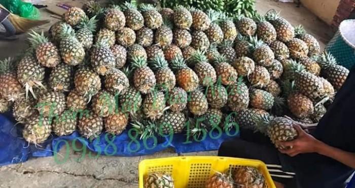 Thơm mật trái 2kg0