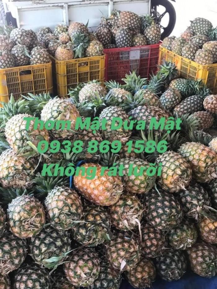 Thơm mật trái 2kg5