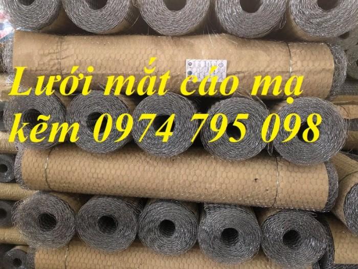 Lưới mắt cáo bọc nhựa mắt lưới 25x25mm hàng có sẵn tại Hà Nội1