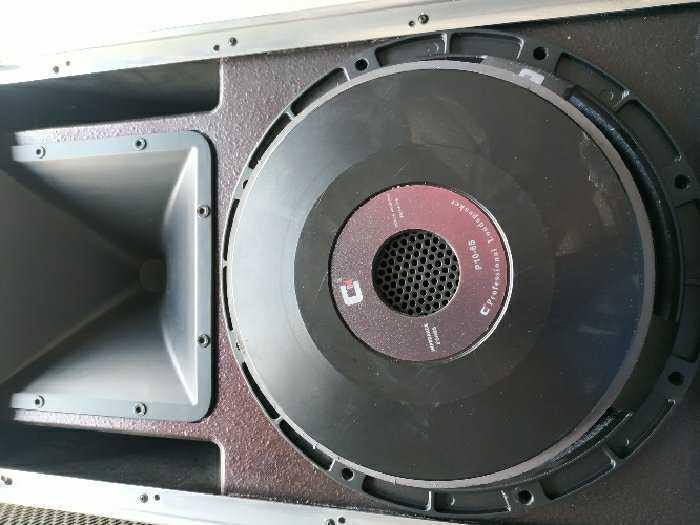 Loa CELESTION BASS 25 made in italy1