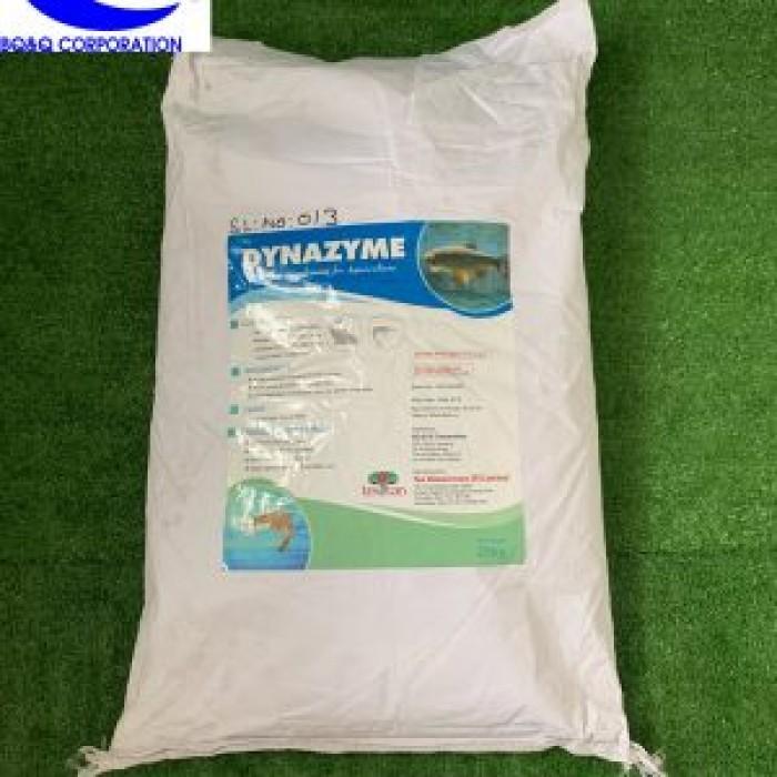 Enzyme cho ăn, tăng trọng trên động vật thủy sản - Dynazyme0