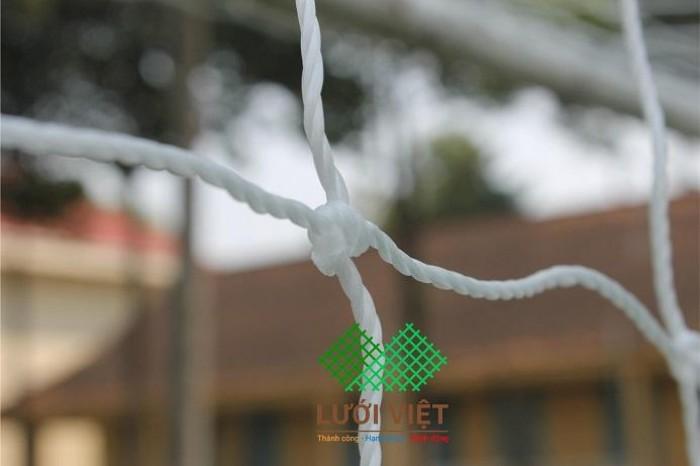 Lưới khung thành bằng cước dùng cho sân cỏ nhân tạo3