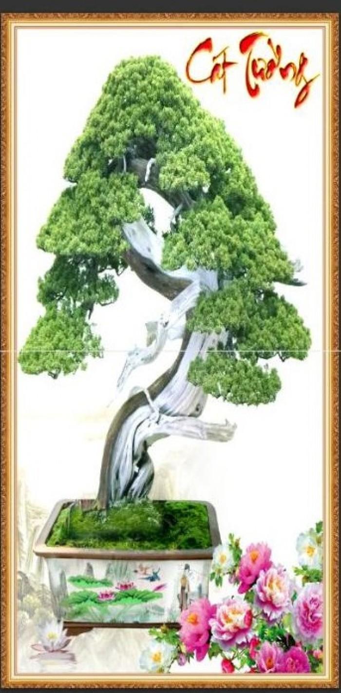 Tranh 3d cây tùng - gạch tranh 3d cây tùng2