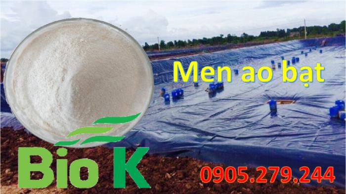 Men vi sinh xử lý ao bạt BioK nguyên liệu0