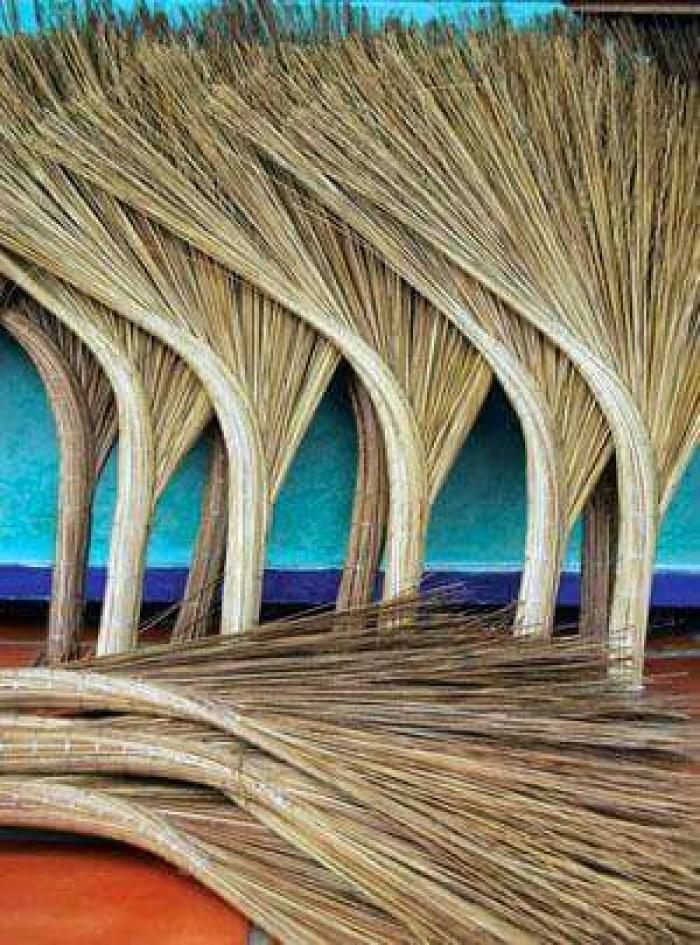 Chổi xương dừa, chổi bông cỏ, chổi chà3