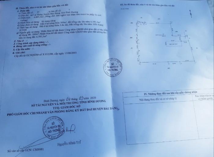Bán 1 hécta (10.000m2) đất Lai Hưng, Bàu Bàng, TC300m2, SHR, giá 6 tỷ.0