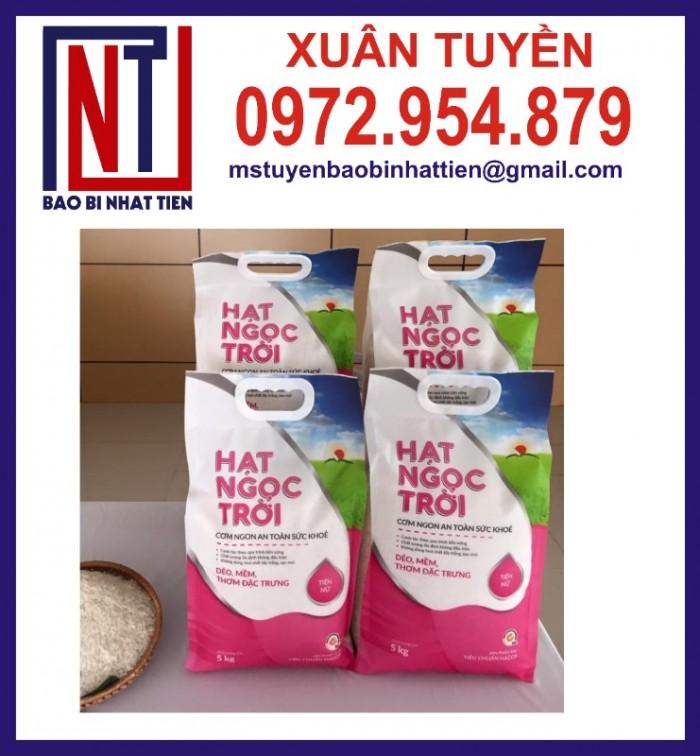 Chuyên cung cấp in ấn túi gạo 5kg PA.PE8