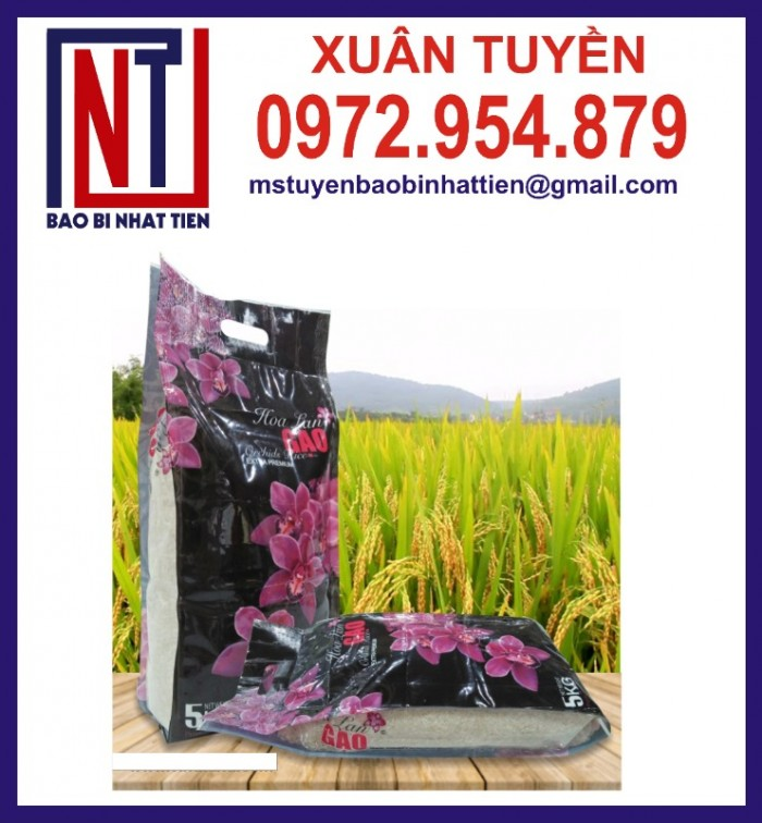 Chuyên cung cấp in ấn túi gạo 5kg PA.PE11