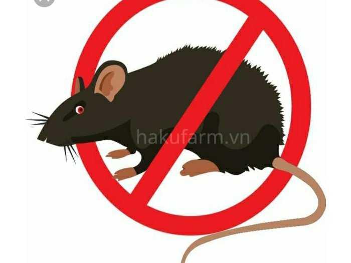 Máy đuổi chuột dùng pin năng lượng0