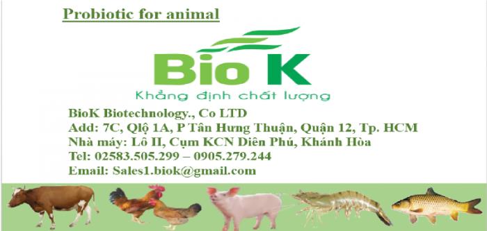 Cần tìm đại lý phân phối men vi sinh nguyên liệu hàng công ty BioK0