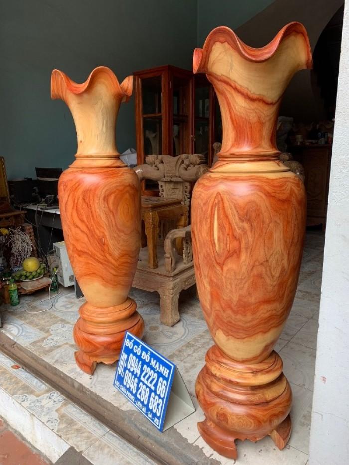 Lục bình gỗ hương nam phi8