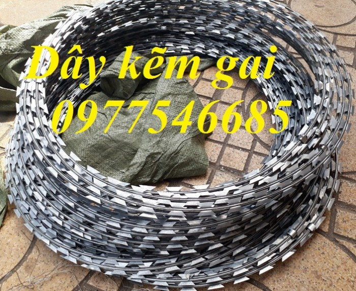 Chuyên Dây Thép Gai Hình Dao vòng 40cm,50cm giá rẻ tại Hà Nội