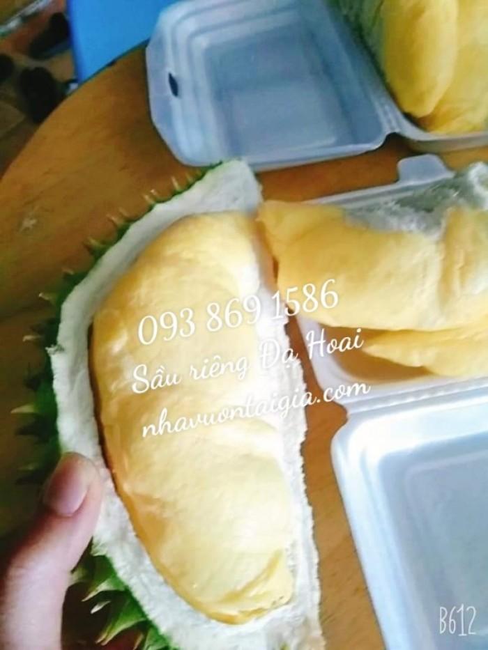 Sầu riêng Đa Hoai Lâm Đồng cơm sầu riêng Ri 69