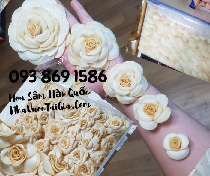 Hoa Sâm Hàn Quốc  mua tại TPHCM gọi 093 869 158610
