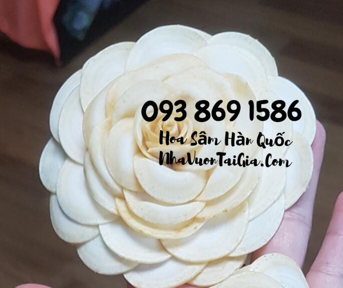 Mua Hoa Sâm Tươi Hàn Quốc làm quà tặng  Gọi 093 869 1586 3