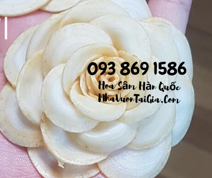 Hoa Sâm Hàn Quốc quà tặng phụ nữ  Gọi 093 869 1586 4