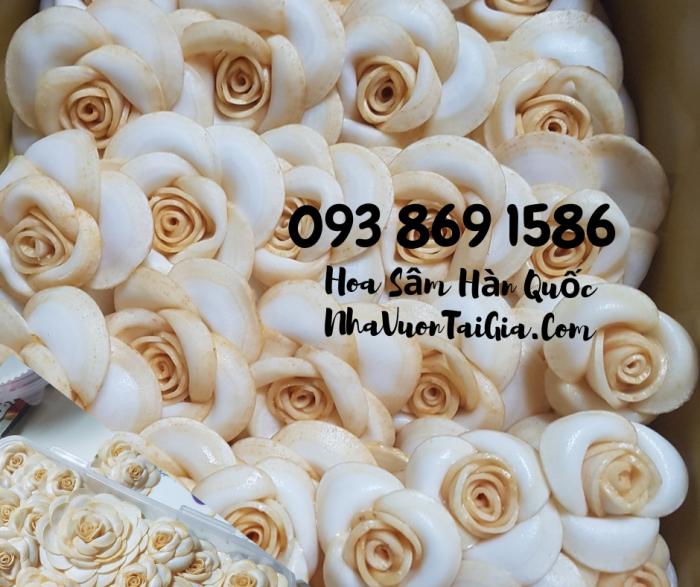 Hoa Sâm Hàn Quốc sỉ TPHCM  - Gọi 093 869 1586 3