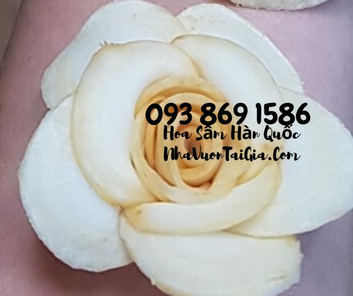 Hoa Sâm Hàn Quốc sỉ TPHCM  - Gọi 093 869 1586 8