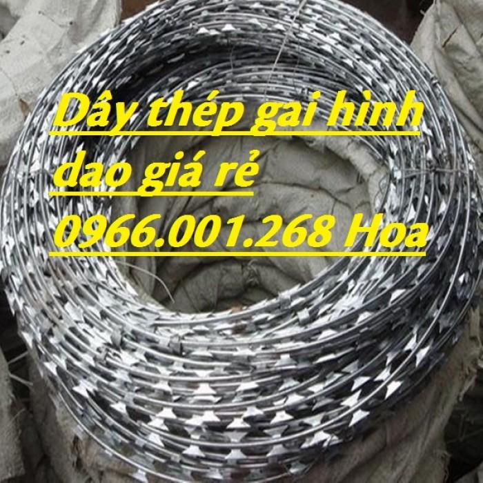 Nhà cung cấp dây thép gai hình dao chống trộm cao 40cm,50cm,60cm,80cm5