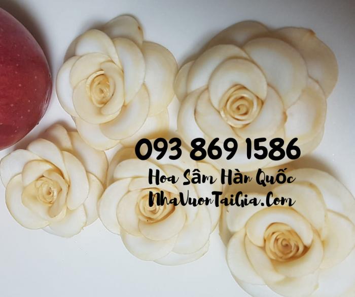 • Mua sâm tươi Hàn Quốc TPHCM -giá Nhân sâm Hàn Quốc  - gọi  093 869 15869