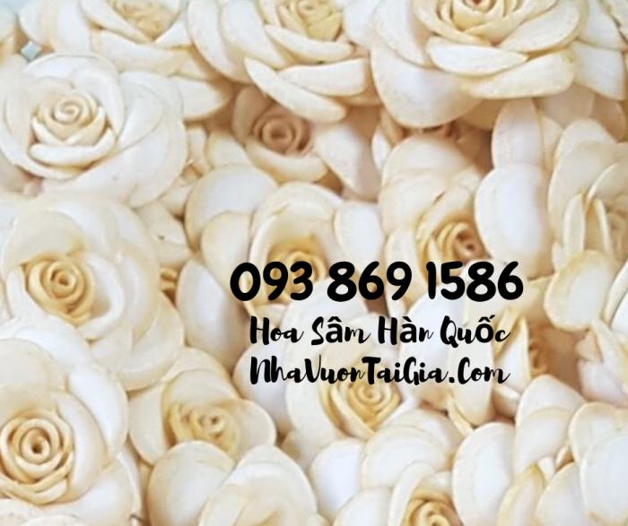 • Mua sâm tươi Hàn Quốc TPHCM -giá Nhân sâm Hàn Quốc  - gọi  093 869 158613
