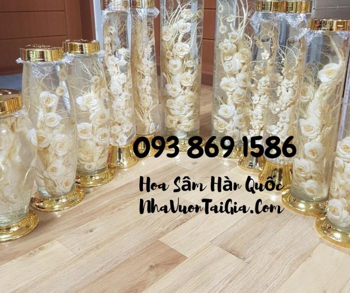 • Mua sâm tươi Hàn Quốc TPHCM -giá Nhân sâm Hàn Quốc  - gọi  093 869 158620